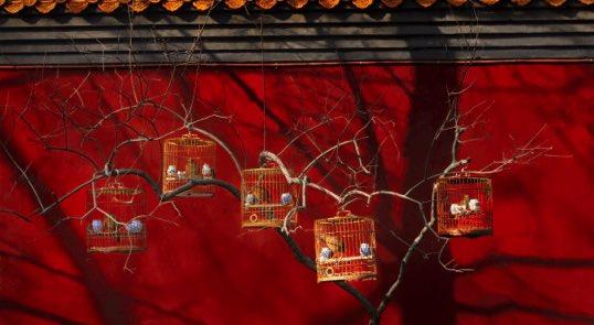 itinerary insert beijing 19