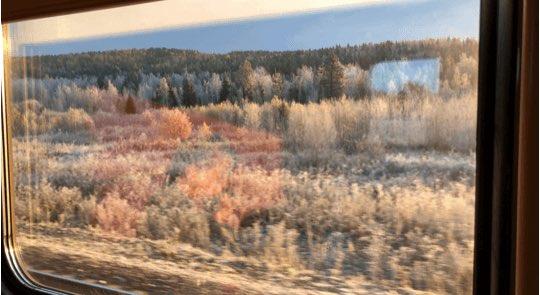 itinerary insert train 43