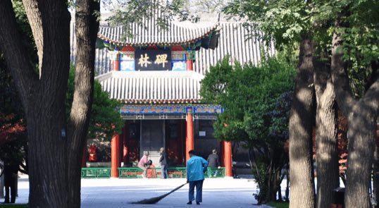 itinerary insert xian 8