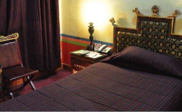 lhasa dhood gu 9