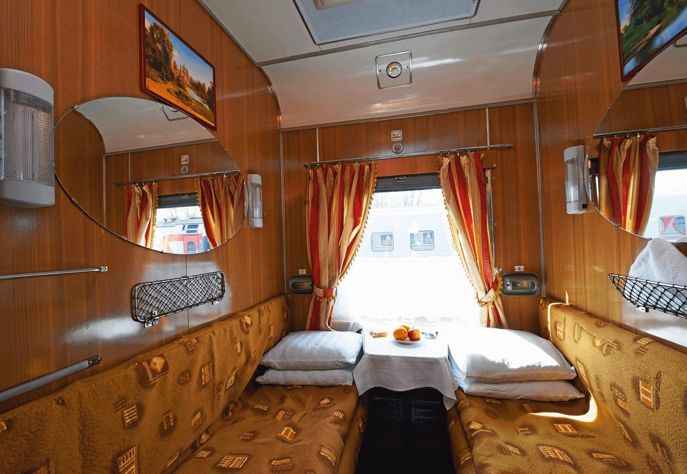 tsars-gold-cat-2-standard-photo-1