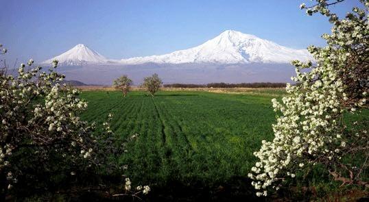 insert GE caucasus 6